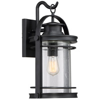Booker 1 Light 11 inch Mystic Black Wall Lantern Wall Light in A21 Medium Base