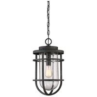 Boardwalk 1 Light 10 inch Mottled Black Outdoor Hanging Lantern