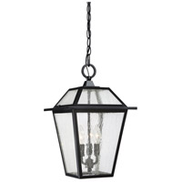 Black Ridge 3 Light 11 inch Mystic Black Outdoor Hanging Lantern