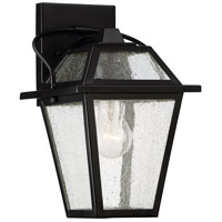 Black Ridge 1 Light 12 inch Mystic Black Outdoor Wall Lantern