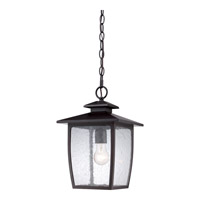 Quoizel Bradley 1 Light Outdoor Hanging Lantern in Palladian Bronze BRY1909PNFL