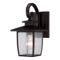 Quoizel Bradley 1 Light Outdoor Wall Lantern in Palladian Bronze BRY8406PNFL