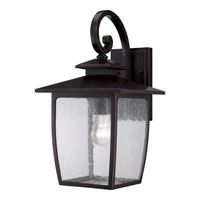Quoizel Bradley 1 Light Outdoor Wall Lantern in Palladian Bronze BRY8409PNFL