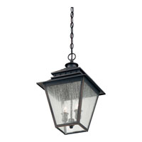 Quoizel Lighting Carson 2 Light Outdoor Hanging Lantern in Weathered Bronze CAN1911WB alternative photo thumbnail
