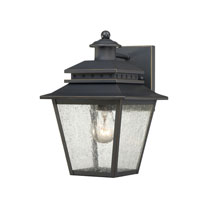 Quoizel Lighting Carson 1 Light Outdoor Wall Lantern in Weathered Bronze CAN8407WB