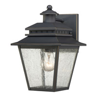 Quoizel Carson 1 Light Outdoor Wall Lantern in Weathered Bronze CAN8407WBFL