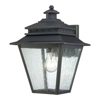 Quoizel Carson 1 Light Outdoor Wall Lantern in Weathered Bronze CAN8409WBFL
