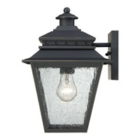 Quoizel Lighting Carson 1 Light Outdoor Wall Lantern in Weathered Bronze CAN8409WB alternative photo thumbnail