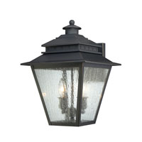 Quoizel Lighting Carson 2 Light Outdoor Wall Lantern in Weathered Bronze CAN8411WB