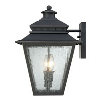 Quoizel Lighting Carson 2 Light Outdoor Wall Lantern in Weathered Bronze CAN8411WB alternative photo thumbnail