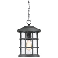 Quoizel CSE1910EK Crusade 1 Light 10 inch Earth Black Outdoor Hanging Lantern