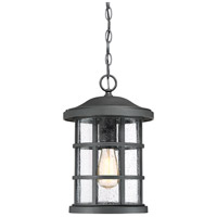 Crusade 1 Light 10 inch Earth Black Outdoor Hanging Lantern
