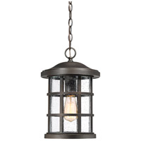 Quoizel CSE1910PN Crusade 1 Light 10 inch Palladian Bronze Outdoor Hanging Lantern