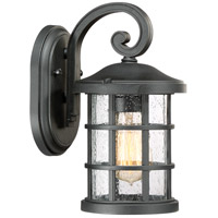Crusade 1 Light 11 inch Earth Black Outdoor Wall Lantern