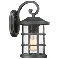 Crusade 1 Light 14 inch Earth Black Outdoor Wall Lantern