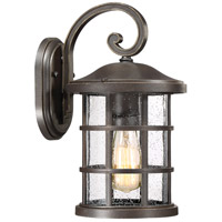 Quoizel CSE8408PN Crusade 1 Light 14 inch Palladian Bronze Outdoor Wall Lantern