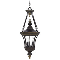 Quoizel Lighting Devon 3 Light Outdoor Hanging Lantern in Imperial Bronze DE1490IB photo thumbnail