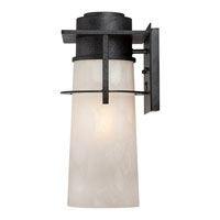 Quoizel Lighting Drew 1 Light Outdoor Wall Lantern in Iron Age DRE8408IR alternative photo thumbnail