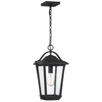 Quoizel DRS1911EK Darius 1 Light 11 inch Earth Black Outdoor Hanging Lantern