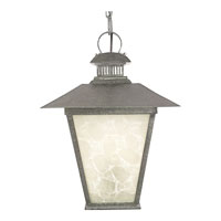 Quoizel Lighting Dover 1 Light Outdoor Hanging Lantern in Hearst Bronze DV1913HS photo thumbnail
