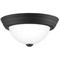 Quoizel ERW1611MBK Erwin 1 Light 11 inch Matte Black Flush Mount Ceiling Light