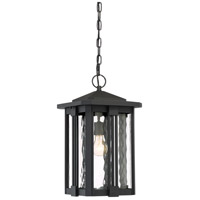 Everglade 1 Light 11 inch Earth Black Outdoor Hanging Lantern