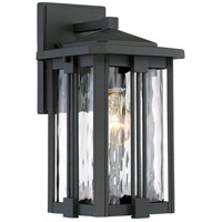 Everglade 1 Light 12 inch Earth Black Outdoor Wall Lantern