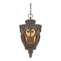 Quoizel Lighting Fort Quinn 2 Light Outdoor Hanging Lantern in Antique Brown FQ1910AW01 alternative photo thumbnail
