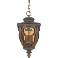 Quoizel Lighting Fort Quinn 2 Light Outdoor Hanging Lantern in Antique Brown FQ1910AW01 photo thumbnail