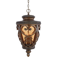 Quoizel Lighting Fort Quinn 4 Light Outdoor Hanging Lantern in Antique Brown FQ1914AW01 photo thumbnail