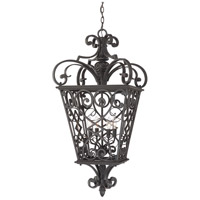 Quoizel Lighting Fort Quinn 4 Light Outdoor Hanging Lantern in Marcado Black FQ1920MK01