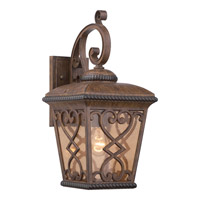 Quoizel Fort Quinn 1 Light Outdoor Wall Lantern in Antique Brown FQ8409AW