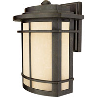 Quoizel Lighting Galen 1 Light Outdoor Wall Lantern in Imperial Bronze GLN8410IB