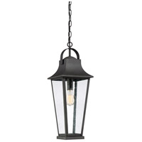 Galveston 1 Light 9 inch Mottled Black Outdoor Hanging Lantern