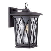 Grover 1 Light 15 inch Mystic Black Outdoor Wall Lantern in Fluorescent