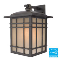 Quoizel Lighting Hillcrest 1 Light Outdoor Wall Lantern in Imperial Bronze HC8411IBFL