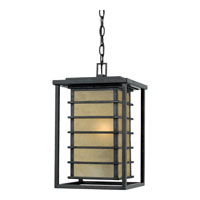 Quoizel Lighting Jonathan 1 Light Outdoor Hanging Lantern in Imperial Bronze JO1910IB photo thumbnail