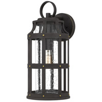 Quoizel LAS8409PN Lassiter 1 Light 20 inch Palladian Bronze Outdoor Wall Lantern