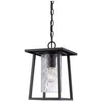 Lodge 1 Light 10 inch Mystic Black Outdoor Hanging Lantern in Standard