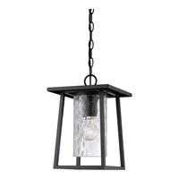 Lodge 1 Light 10 inch Mystic Black Outdoor Hanging Lantern in Fluorescent