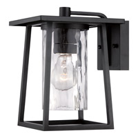 Lodge 1 Light 11 inch Mystic Black Outdoor Wall Lantern in Fluorescent