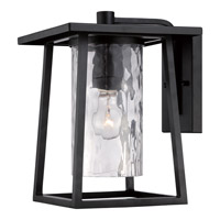 Lodge 1 Light 13 inch Mystic Black Outdoor Wall Lantern in Fluorescent