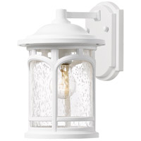 Marblehead 1 Light 11 inch Fresco Outdoor Wall Lantern