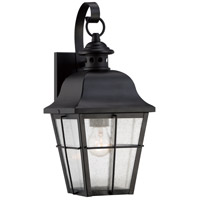 Quoizel Millhouse 1 Light Outdoor Wall Lantern in Mystic Black MHE8406K