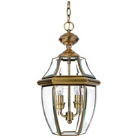 Quoizel Lighting Newbury 2 Light Outdoor Hanging Lantern in Antique Brass NY1178A