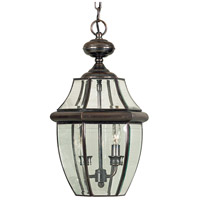Quoizel Lighting Newbury 2 Light Outdoor Hanging Lantern in Aged Copper NY1178AC