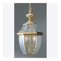 Quoizel NY1178B Newbury 2 Light 10 inch Polished Brass Outdoor Hanging Lantern alternative photo thumbnail