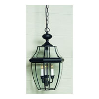 Quoizel NY1178K Newbury 2 Light 10 inch Mystic Black Outdoor Hanging Lantern alternative photo thumbnail