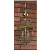 Newbury 3 Light 13 inch Antique Brass Outdoor Hanging Lantern