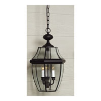 Quoizel NY1179K Newbury 3 Light 13 inch Mystic Black Outdoor Hanging Lantern alternative photo thumbnail